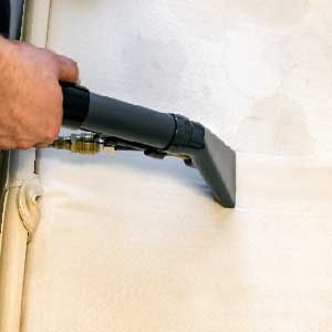 Carpet Cleaning Hand Cleaning