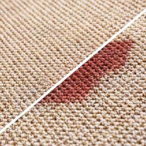 Carpet Cleaning Stain Protection Treatment